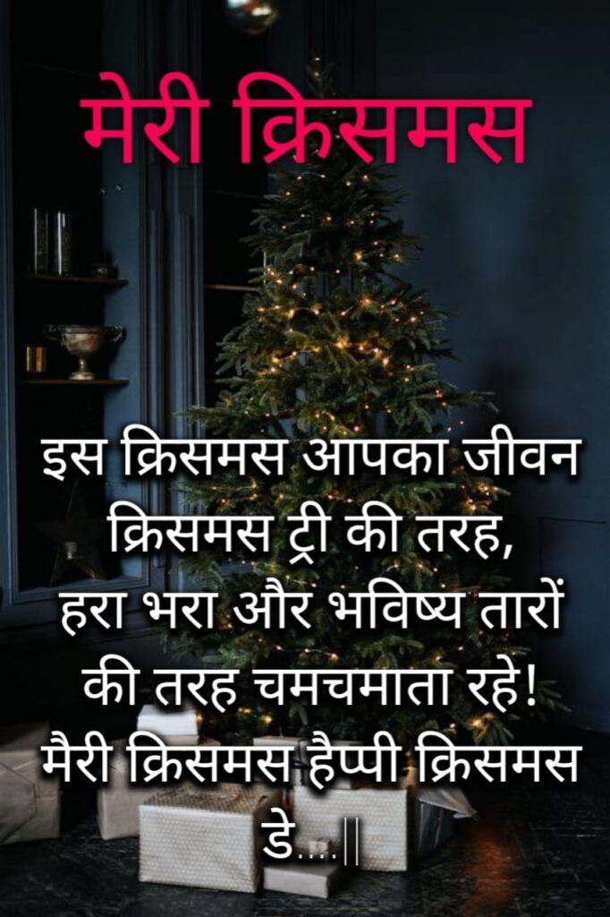 merry christmas sms hindi